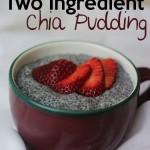 two ingredient chia pudding